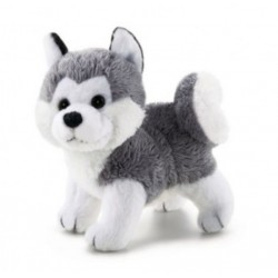 TRUDI SWEET COLLECTION HUSKY CM 9